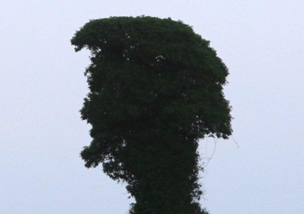 elvis tree0853723001
